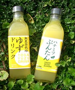 濃縮100%果汁はちみつジュース 2本セット ゆず・ぶんたん